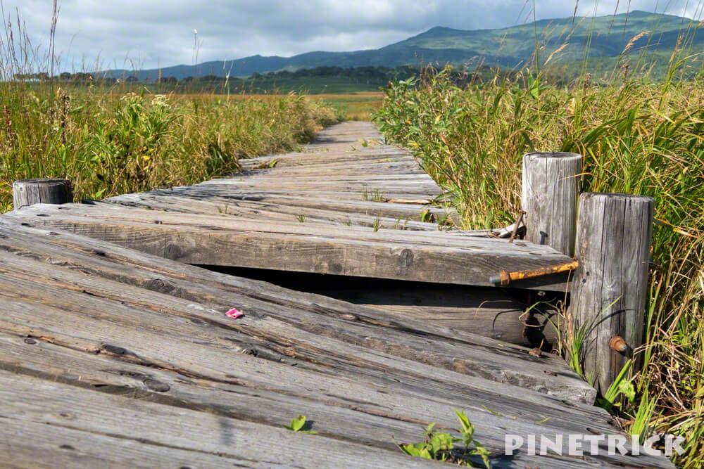 雨竜沼湿原 木道 破損 工事 修復 南暑寒岳 北海道