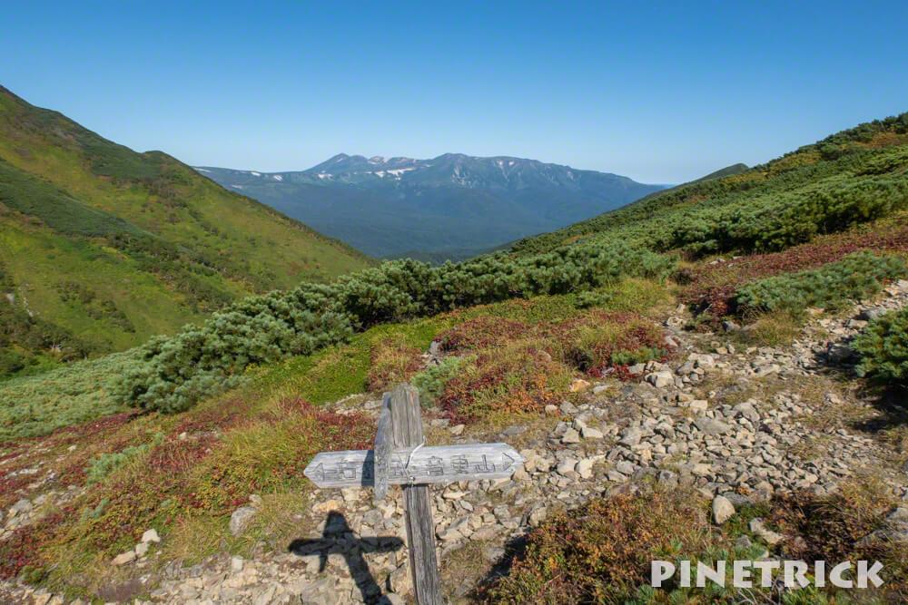 石狩岳 シュナイダーコース 分岐 旭岳 登山 北海道