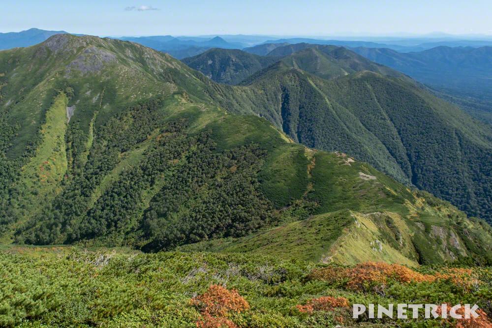 石狩岳 分岐 シュナイダーコース 音更山 ハイマツ 登山 北海道