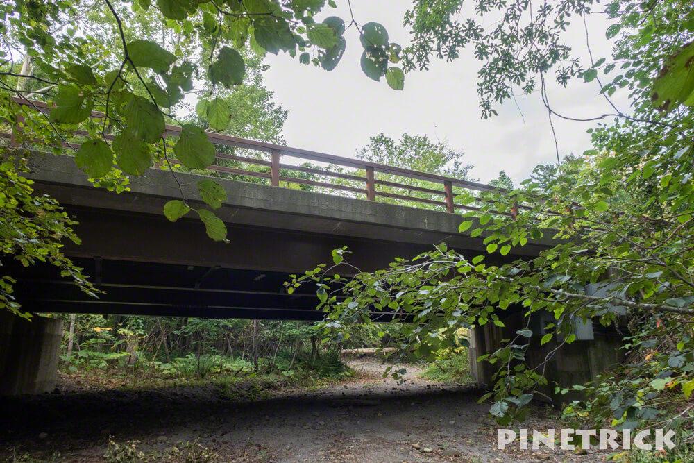 苔の回廊 支笏湖 楓沢 紋別橋 駐車場 行き方 北海道