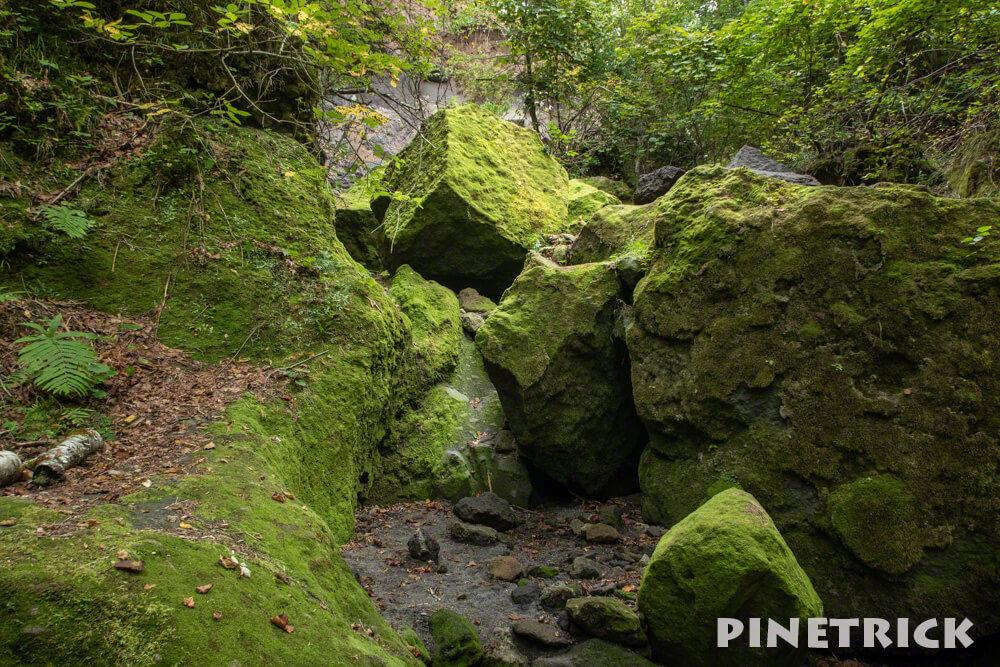 苔の回廊 楓沢 第一回廊 支笏湖 北海道 神秘的 観光スポット 歩き方 行き方 インスタ