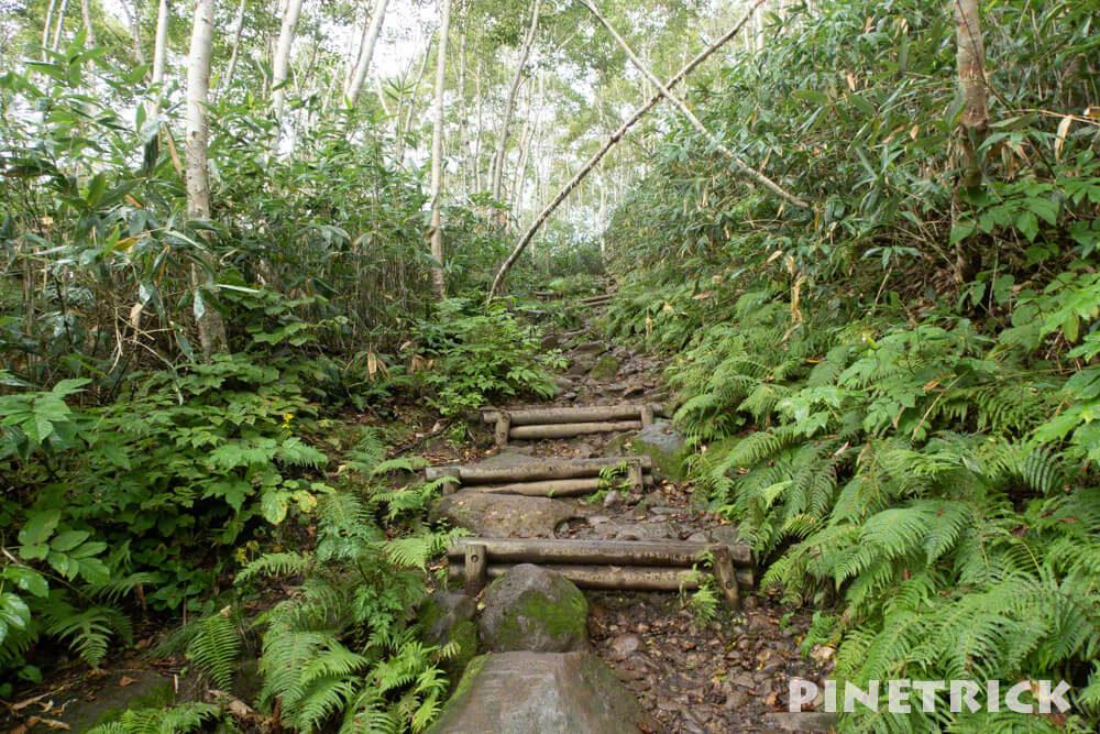 ニセコアンヌプリ 登山道 サンセット登山 北海道