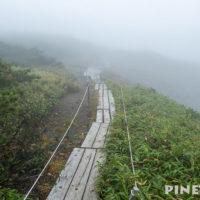 夕張山地 夕張岳 北海道 登山 ハイキング 木道 花の山