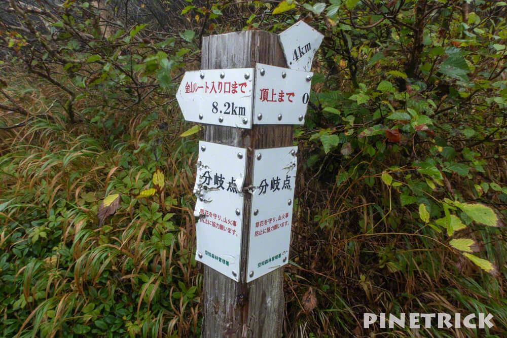 夕張山地 夕張岳 分岐 金山コース 登山 北海道 トレッキング