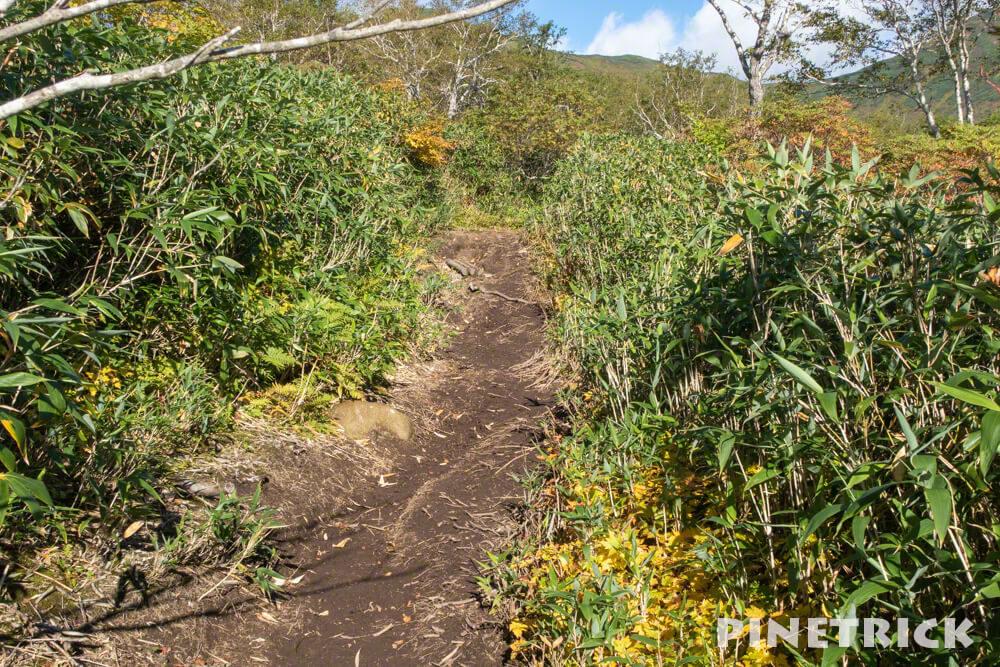 トムラウシ山 南沼キャンプ指定地 テント泊 登山 短縮コース 北海道 泥濘
