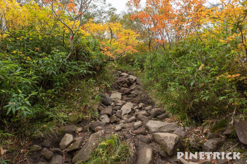 トムラウシ山 南沼キャンプ指定地 テント泊 登山 短縮コース 北海道 コマドリ沢 登り