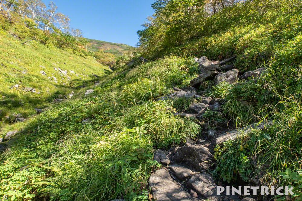 トムラウシ山 南沼キャンプ指定地 テント泊 登山 短縮コース 北海道 コマドリ沢