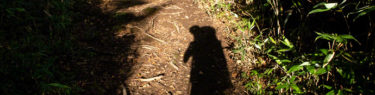 トムラウシ山 テント泊 令和元年 南沼キャンプ指定地 登山 北海道