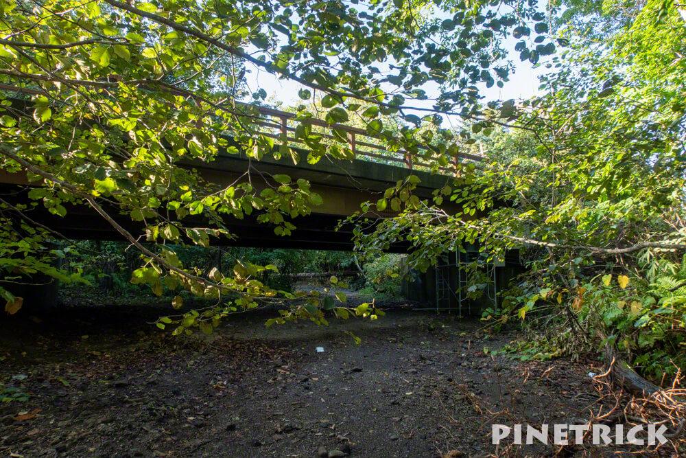 楓沢 苔の回廊 紋別橋 観光スポット 支笏湖