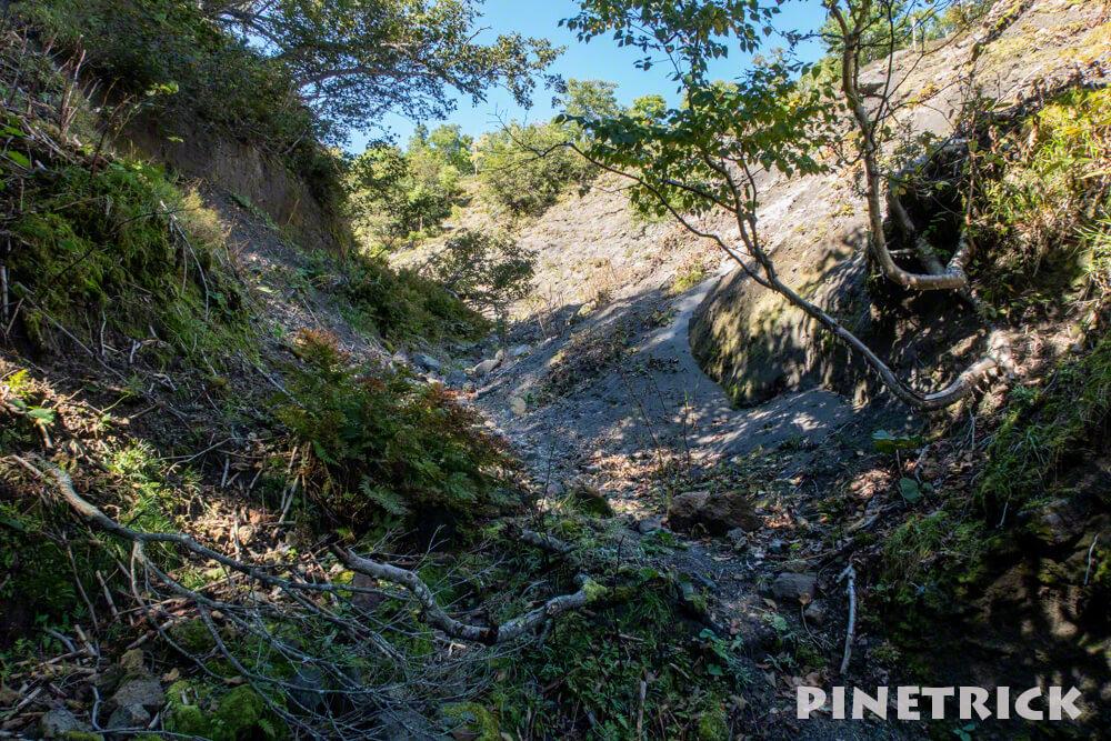 楓沢 苔の回廊 ハイキング 登山 観光スポット 支笏湖