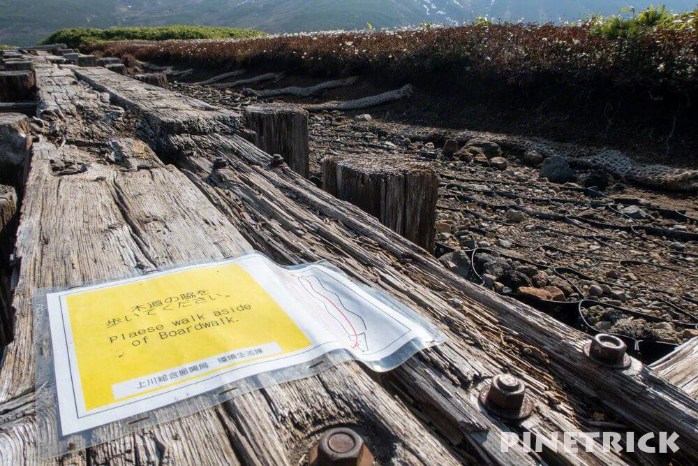 大雪山 旭岳 ロープウェイ 紅葉 北海道 登山  観光名所 絶景 木道