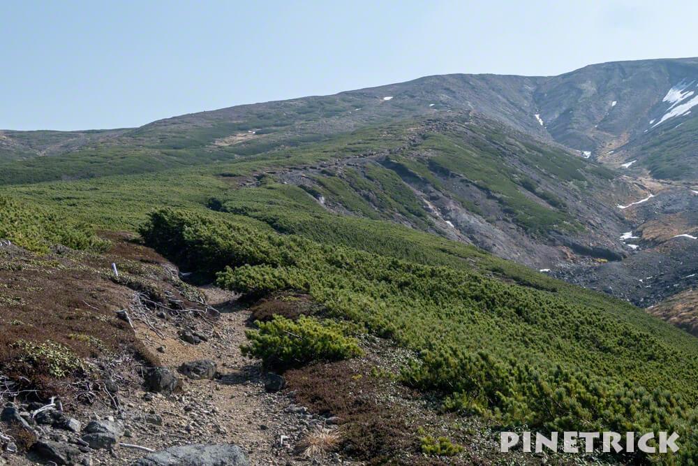 大雪山 旭岳 ロープウェイ 紅葉 北海道 登山  観光名所 絶景 中岳分岐
