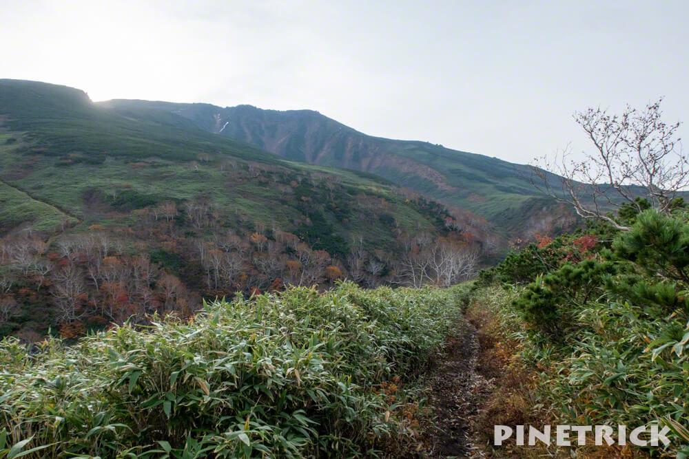 愛山渓温泉 登山 樹林帯 紅葉 沼の平 三十三曲りコース 永山岳