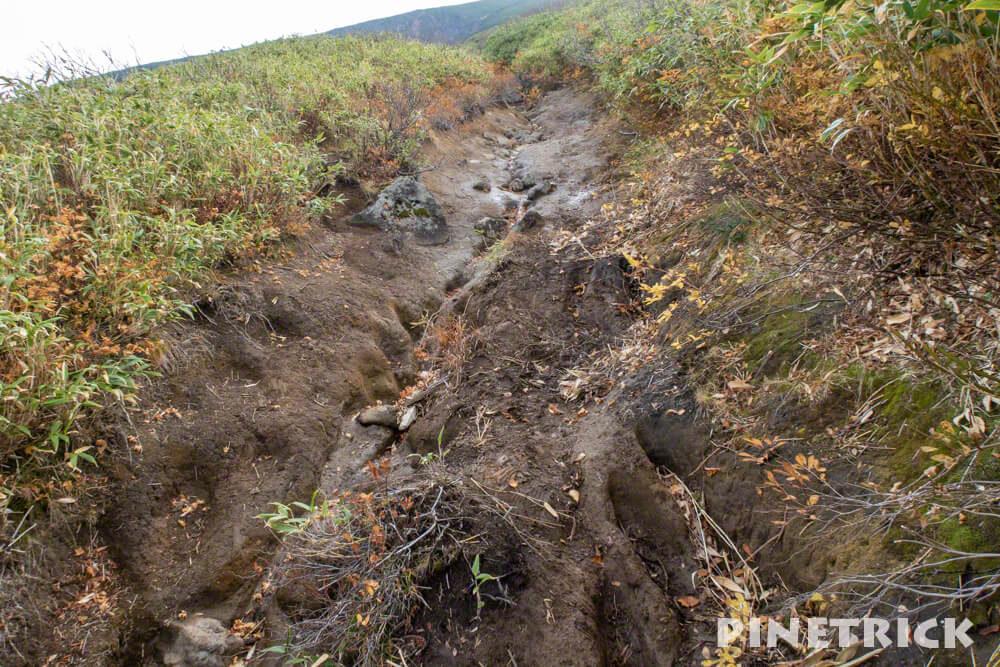 愛山渓温泉 登山 樹林帯 紅葉 沼の平 三十三曲りコース 永山岳 粘土質 ヌルヌル
