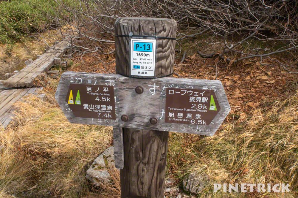 大雪山 裾合平 沼の平 中岳温泉 分岐 北海道 登山