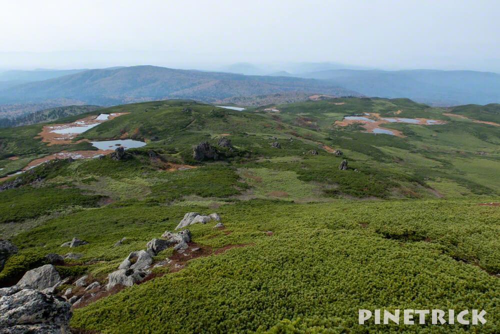 大雪山 沼の平 当麻乗越 沼巡り 北海道 登山