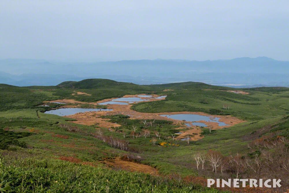 北海道 登山 大雪山 沼の平 六の沼 紅葉