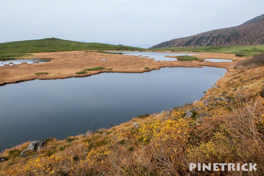 大雪山 半月沼 沼の平 北海道 登山 紅葉