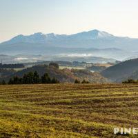 美瑛町 観光名所 撮影スポット 五稜の丘 紅葉 秋 雲海 霧 北海道