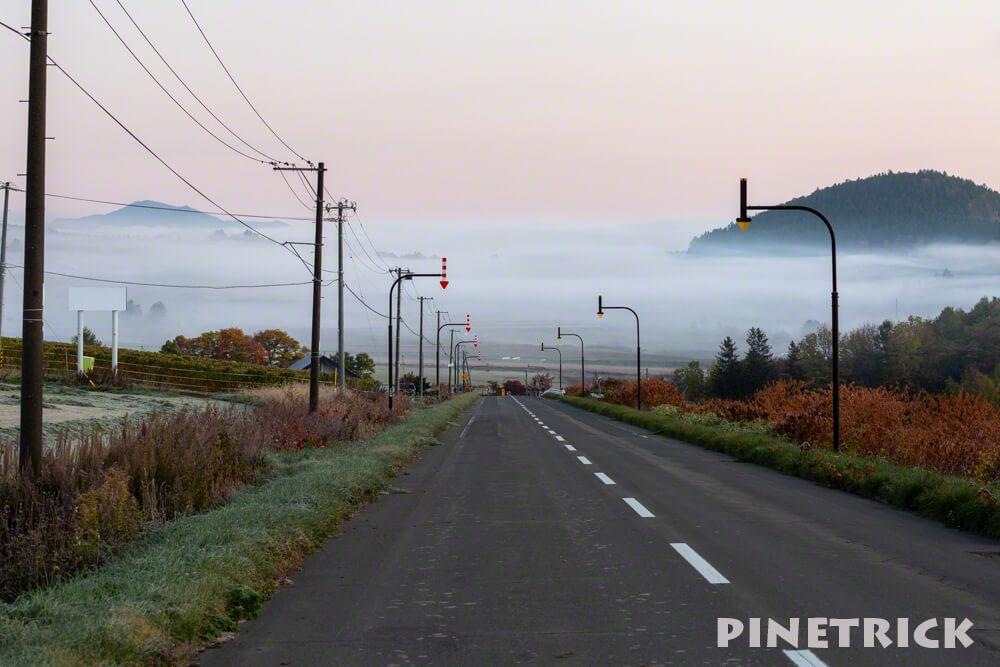 北海道 雲海 道路 観光 富良野市 濃霧
