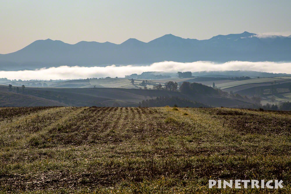北海道 美瑛町 五稜の丘 撮影スポット 神秘的 絶景
