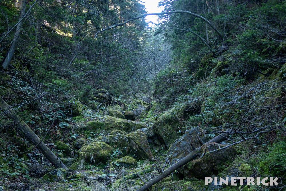 雌阿寒岳 樹林帯 登山 北海道