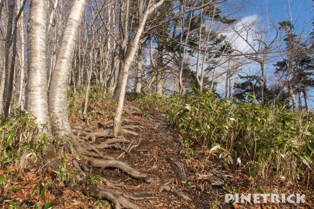 イチャンコッペ山 登山 北海道 冬山