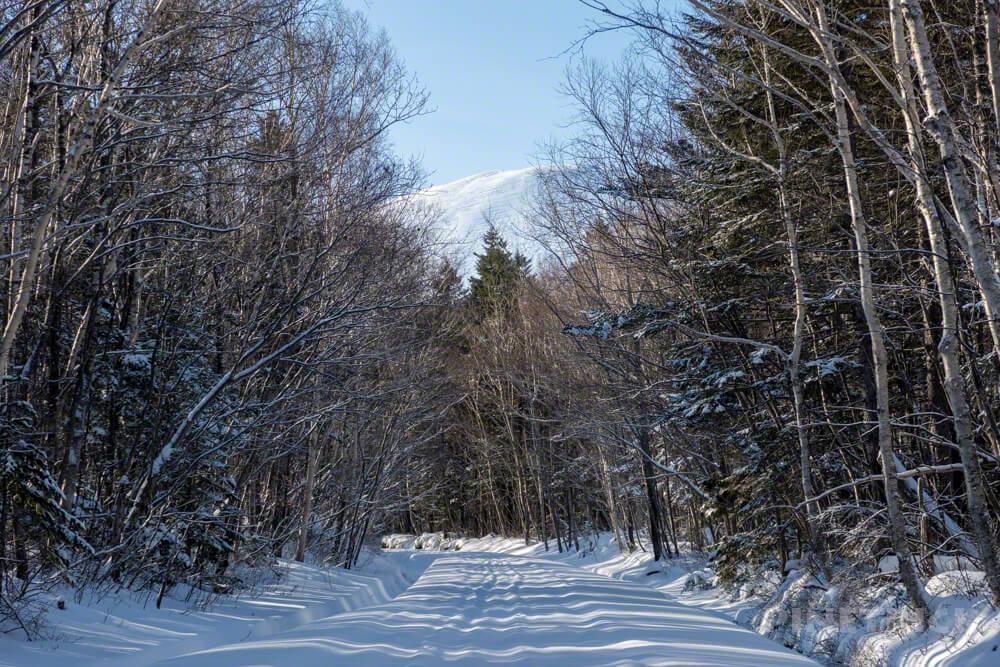 樽前山 冬山 北海道 登山 林道歩き