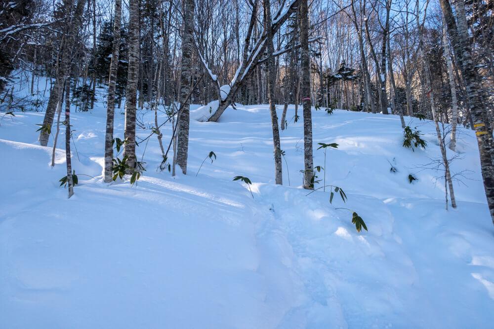 漁岳 取付き 冬山 北海道 登山