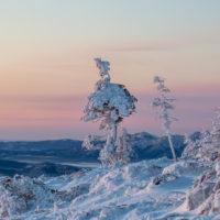 藻琴山 樹氷 日の出 冬山 登山 道東 北海道