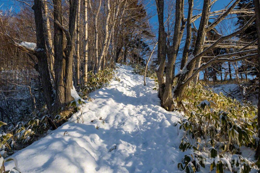 北海道 冬山 登山 支笏湖 イチャンコッペ山 幌平山 登山道 急登