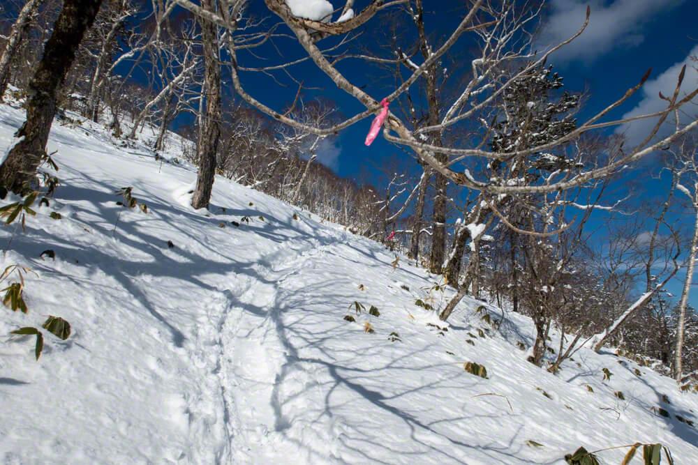 イチャンコッペ山 ピンクテープ 登山 冬山 北海道 支笏湖