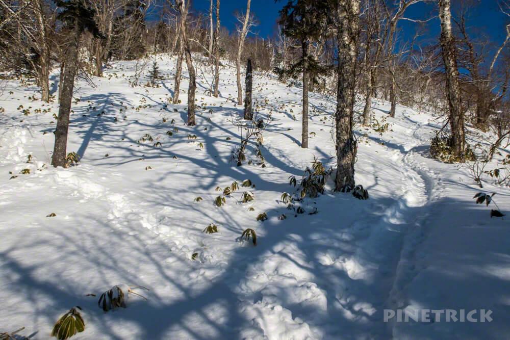 北海道 冬山 登山 イチャンコッペ山 幌平山 ショートカット 登山道 トレース