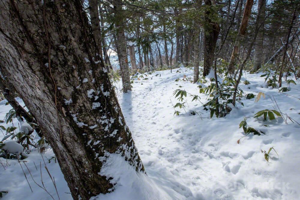 幌平山 イチャンコッペ山 急登 下山 北海道 登山 冬山