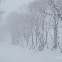 紋別岳 北海道 支笏湖 樹氷 登山 冬山 ガス 吹雪 スノーシュー