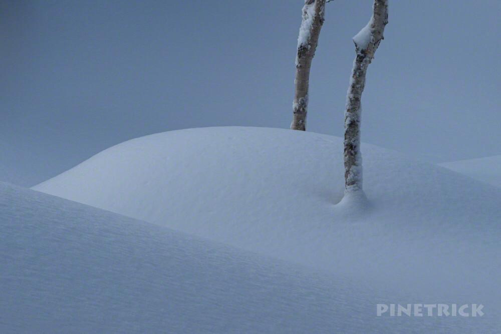 旭岳スキーコース 樹林帯 木陰 北海道 冬山 登山