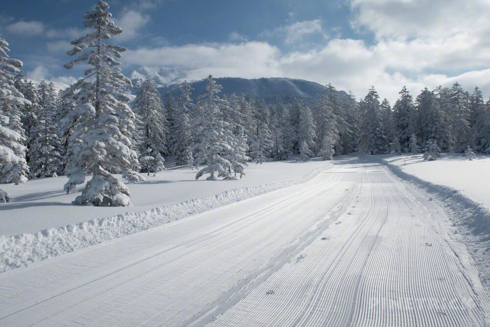 旭岳スキーコース Cコース 冬山 スノーシュー 登山 北海道