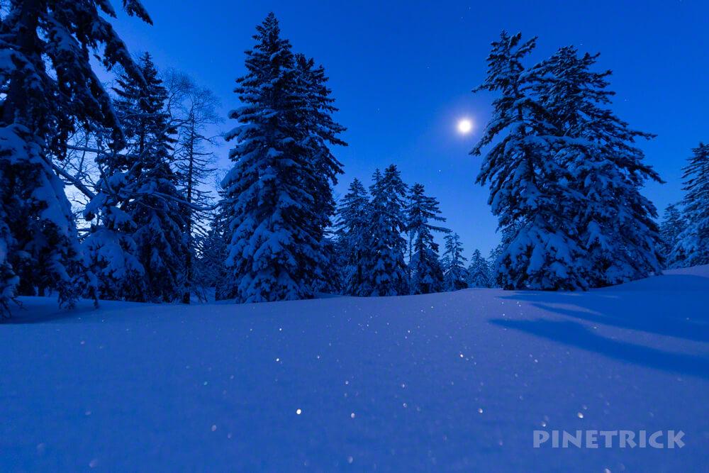 旭岳温泉自然探勝路 月明かり スノーシュー クロスカントリー 穴場 観光スポット 大雪山 樹林帯 樹氷