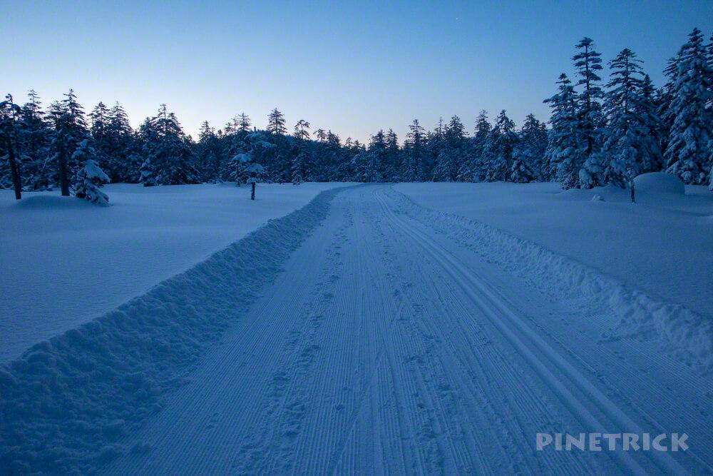 クロカン・スノーシューコース 旭岳温泉自然探勝路 樹林帯 おすすめ 大雪山 樹氷