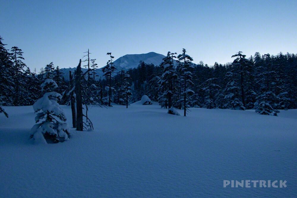 旭岳温泉自然探勝路 大雪山 スノーシュー クロスカントリー 樹氷 樹林帯