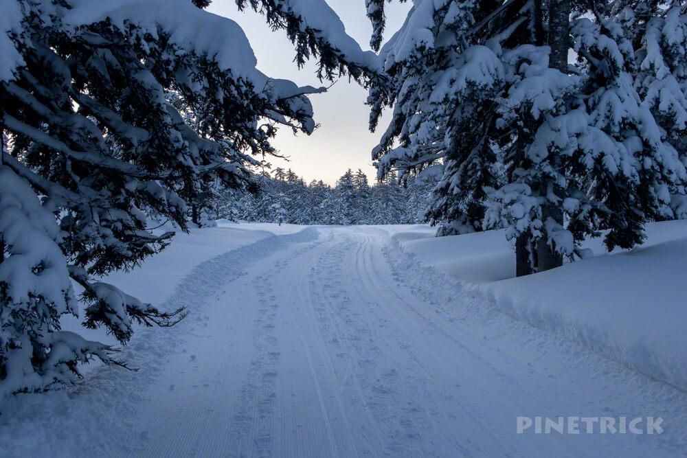 自然探勝路 大雪山旭岳 クロスカントリー スノーシュー アクティビティ コース 樹氷 モンスター
