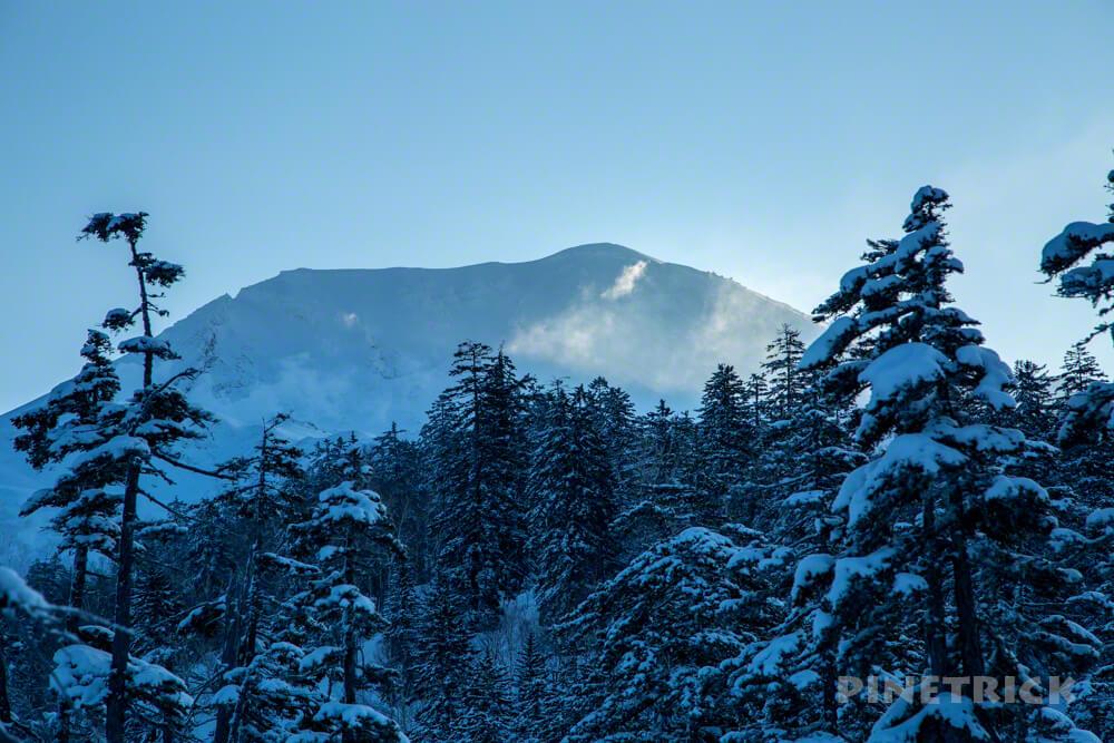 大雪山旭岳 自然探勝路 スノーシュー クロスカントリースキーコース 樹氷 モンスター