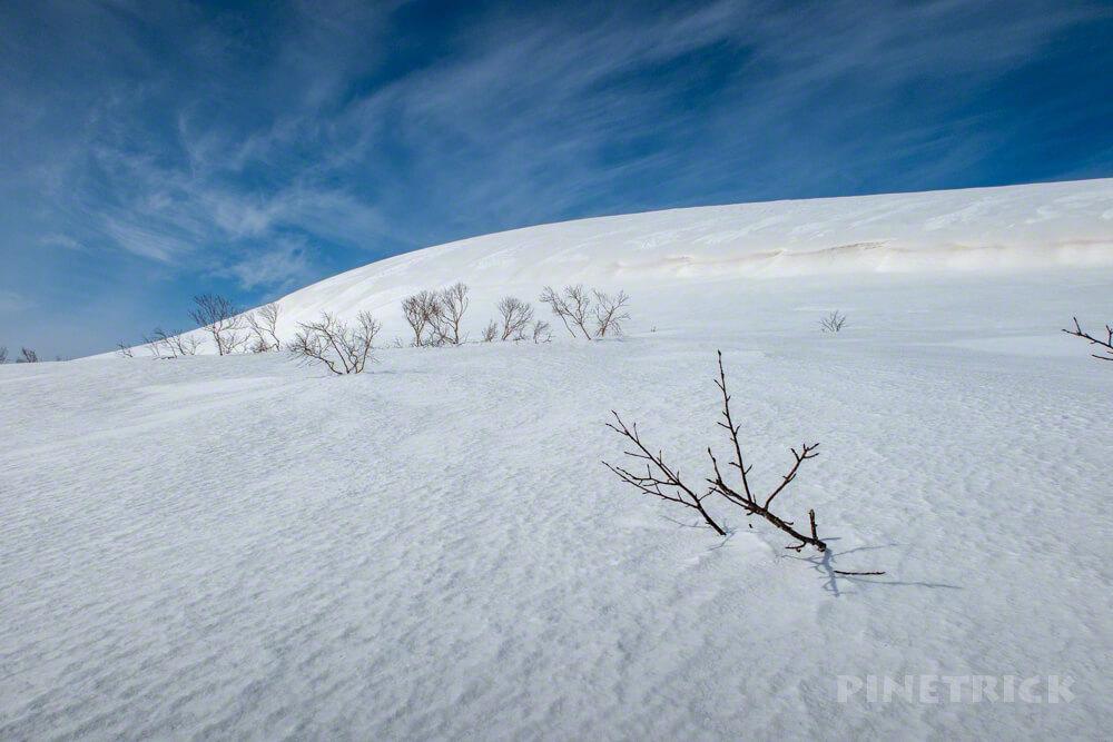 岩内岳 目国内岳 スノーシュー 雪原 ニセコ 冬山 北海道 登山 絶景