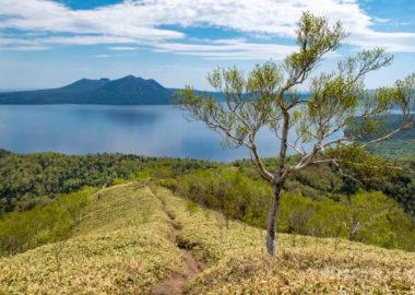 イチャンコッペ山 登山 支笏湖 樽前山 風不死岳 一本の木 絶景 トレッキング トレラン