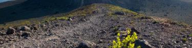 樽前山 登山道 溶岩ドーム 西山 逆光 高山植物 朝日 北海道