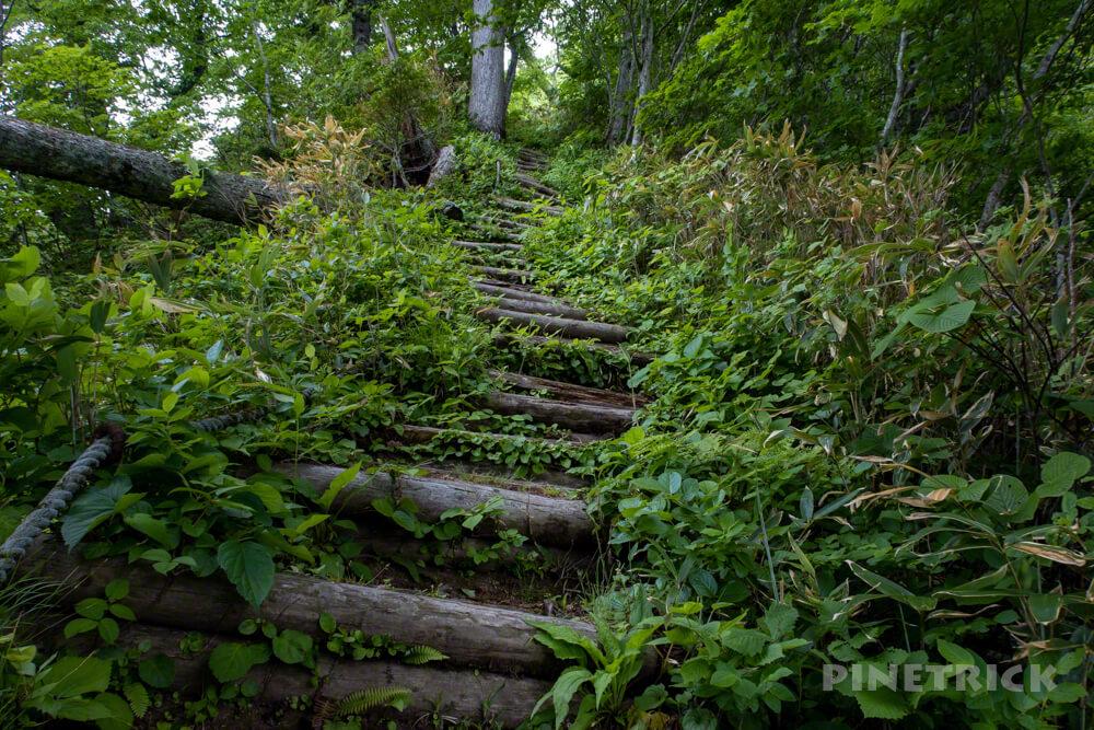 神居尻山 登山口 駐車場 Bコース 道民の森 北海道 避難小屋 熊 階段