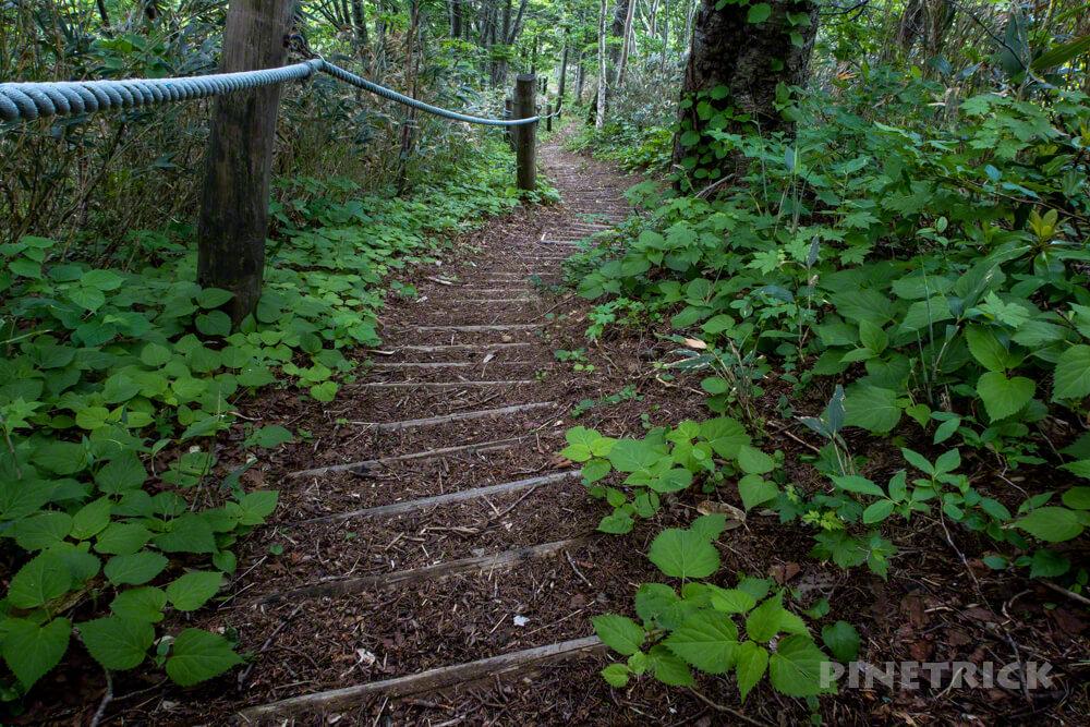 神居尻山 道民の森 北海道 登山 山頂 Aコース 木階段