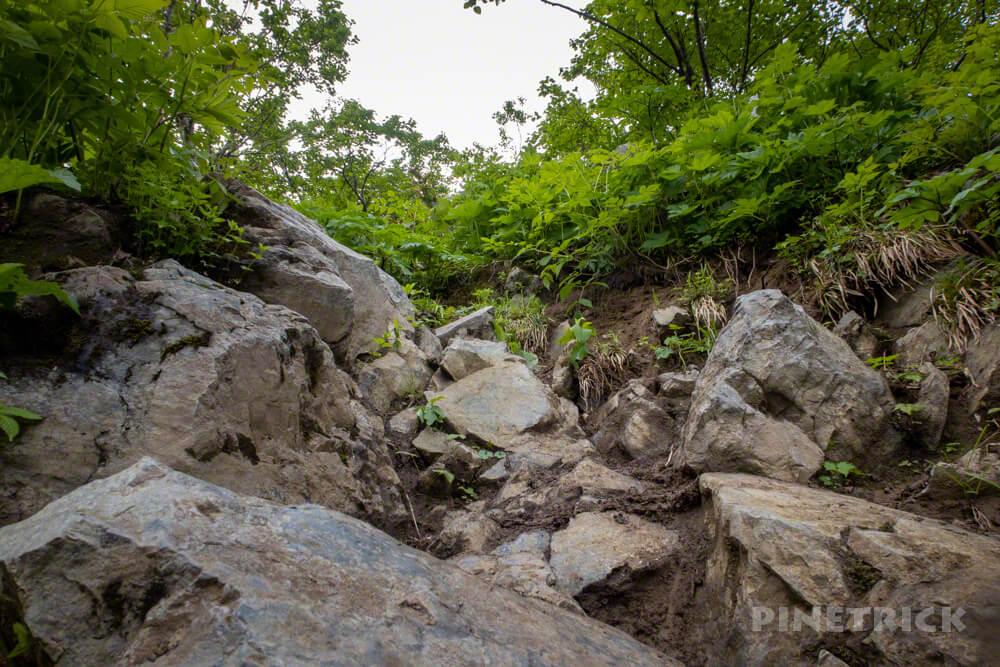 夕張岳 登山 北海道 花の百名山 岩場