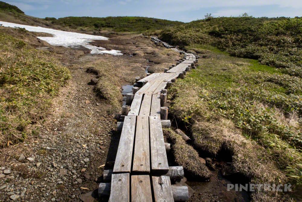 夕張岳 登山 北海道 花の百名山 木道 湿原