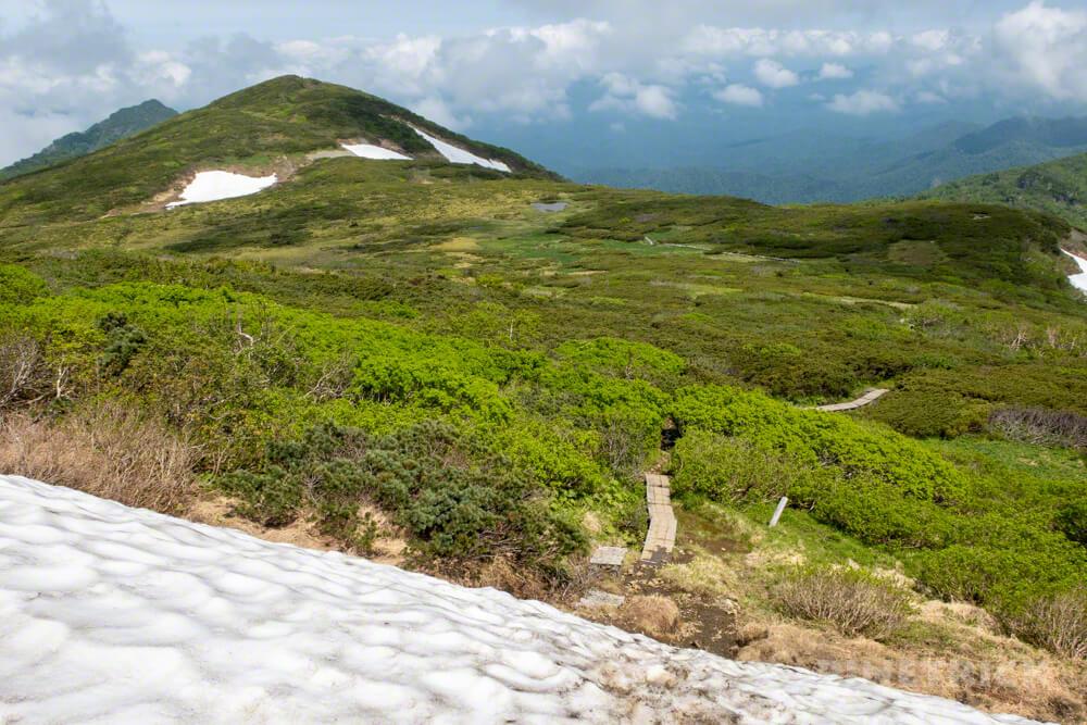 夕張岳 登山 山道 木道 雪渓 花の百名山 北海道